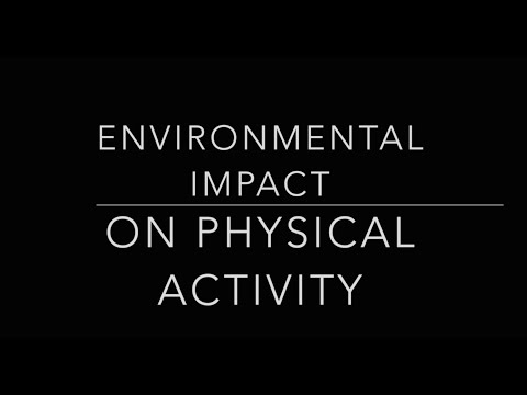 Environmental Impact on Physical Activity