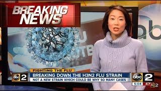 Deadly Flu Kills Hundreds in Australia, ALERT: UK and US Outbreak (H3N2) 2018