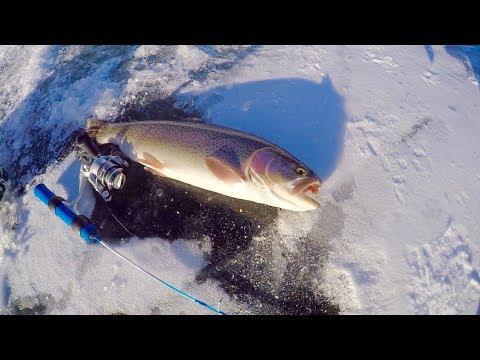 Colorado Wickedfisha- S2E8:  Incredible Fast Action On Ice At Lake John