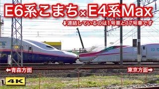 E6系こまち × E4系Max !!! 新幹線車両基地まつり 2019.10.26【4K】