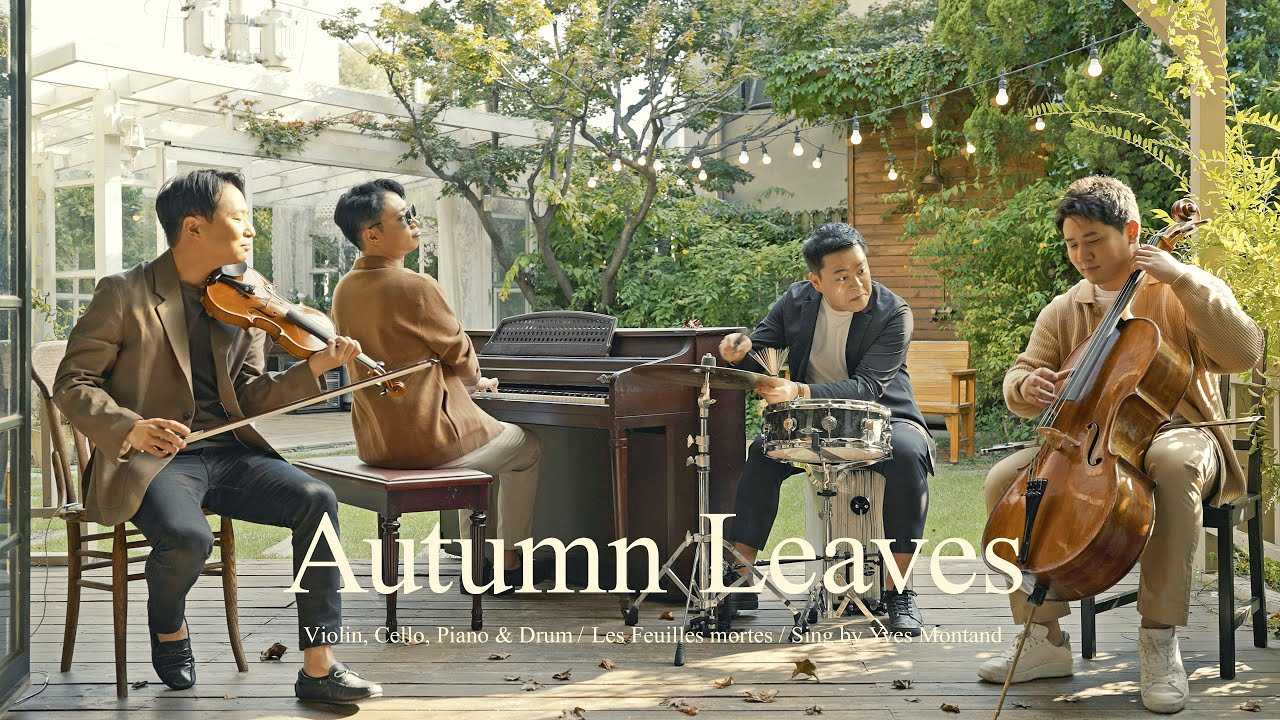 Autumn Leaves🍂with Breeze (violin,cello ,piano&jazz drum)