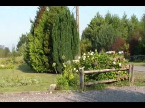 5-bedroom,-4-bath-house-in-gated-community-in-villarrica,-chile