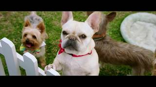 DOG DAYS  Official Trailer DOGDAYS 検索動画 35