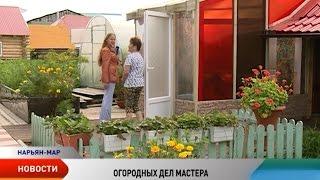 Что растет у огородников и садоводов микрорайона Качгорт