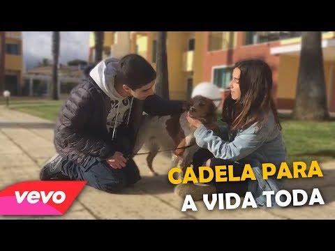 CADELA PARA A VIDA TODA - PARÓDIA (A Vida Toda - Carolina Deslandes)
