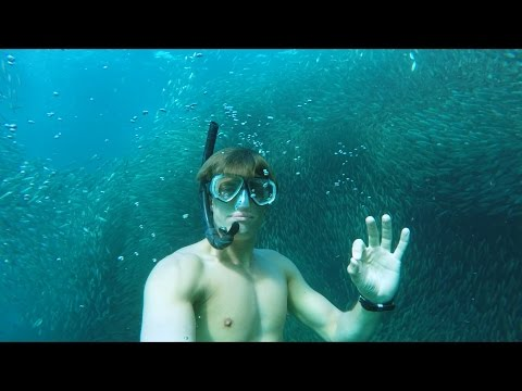 GoPro Awards: Swimming with a School of Silver Fish