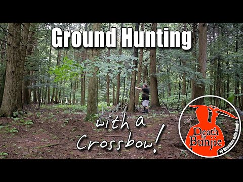 Ground Hunting Strategies for CROSSBOW HUNTERS!