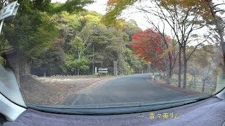 岡山県道392号百谷寺元線、紅葉、旧R179-r75 車載動画