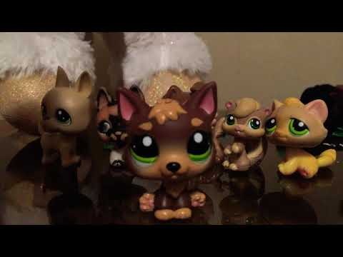What lps german Shepherd mold is better!