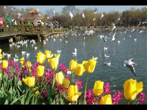 Fairyland Hotel Jingxing Branch - Kunming - China