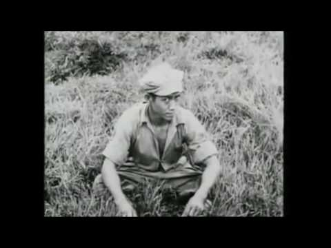 The Malayan Emergency Documentary