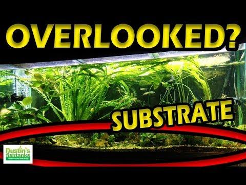 Planted Aquarium SUBSTRATE - the Most OVERLOOKED Part of your aquarium.