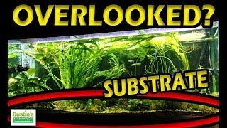 Planted Aquarium SUBSTRATE - The Most OVERLOOKED Part of Your Aquarium