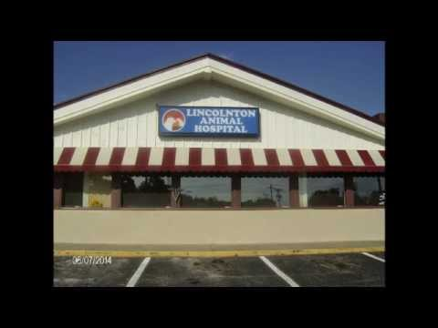 Lincolnton Animal Hospital Remote Grand opening