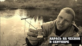 ЛОВЛЯ КАРАСЯ НА ЧЕСНОК! Рыбалка на карася в сентябре! Рыбалка на пруду.