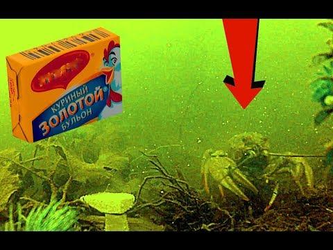 Реакция рыбы на