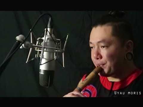 Sayang - Via Vallen Cover Sape' Alat Musik Tradisional Dayak Kalimantan