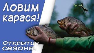 Рыбалка на фидер в июне Ловим карася Открытие летнего сезона