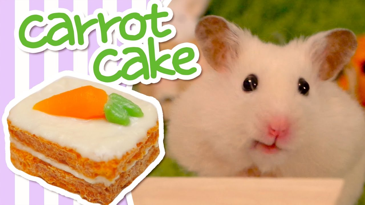 How To Make A Cake For Hamster