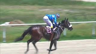 Vidéo de la course PMU PREMIO HANSEL