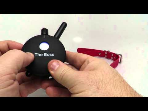 E-Collar Technologies Boss Educator ET-802 2 Dog