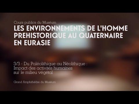 Du Paléolithique au Néolithique : Impact des actitivités humaines sur le milieu végétal (3/3)