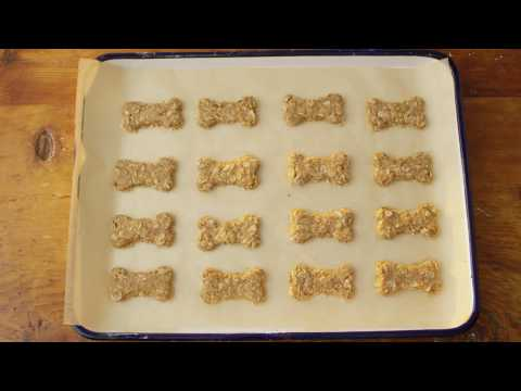 Oat Dog Treats | Quaker®