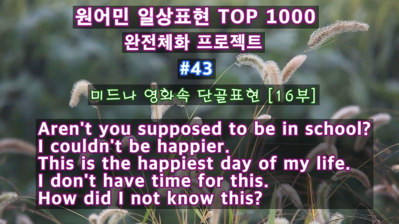 #43[미드 단골표현 5개][원어민이 매일쓰는 영어회화 TOP 1000, 완전 체화 프로젝트]