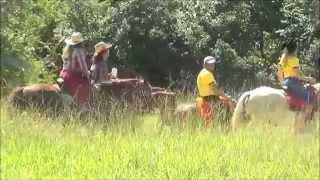 CAVALGADA ECOLOGICA DE NOVO BRASIL GO 2015