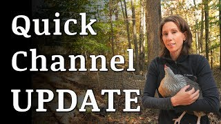 Chickens, House Hunt and Channel Update