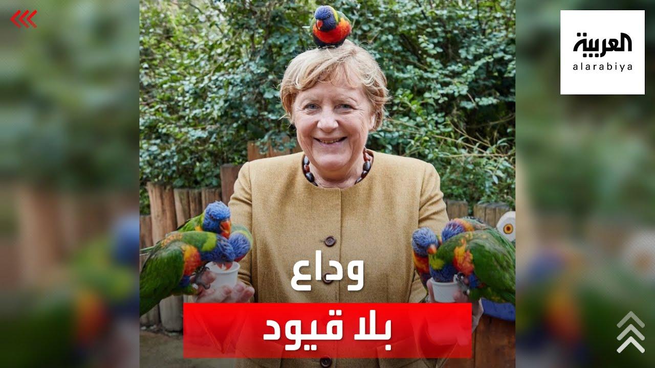 بعيدا عن الجدية والبروتوكولات الرسمية.. ميركل تودع منصبها بالضحك رفقة الطيور  - نشر قبل 33 دقيقة