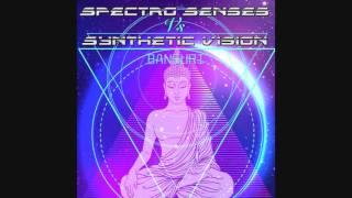 Spectro Senses & Synthetic Vision - Bansuri