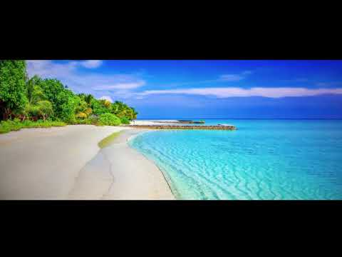 Regi - Where Did You Go (Summer Love)(DIMARO's Love from Ibiza Extended Remix)