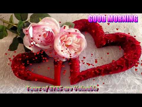 GOOD MORNING  video....PAL PAL DIL KE PAS -Whatsapp