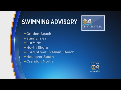Miami-Dade Health Authorities Issue Swimming Advisory For Area