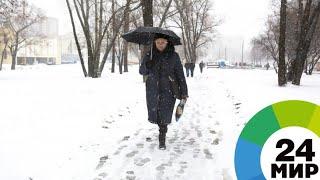 В Москве из-за ветра объявлено штормовое предупреждение - МИР 24
