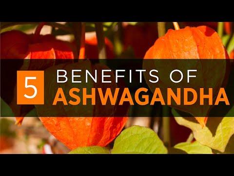 Ashwagandha Bio Poudre | Posologie - Bio - Pas cher