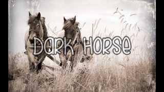 Katy Perry - Dark House (Lyrics)