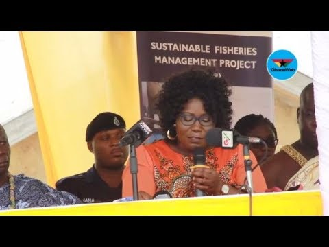 DAA Fisheries Training Centre to train 300 fish processors annually – Elizabeth Afoley Quaye