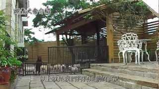 翊鼎犬舍http://www.99chihuahua.com/ 版權所有.