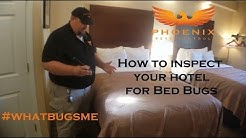 How to inspect your hotel for Bed Bugs Phoenix Pest Control TN