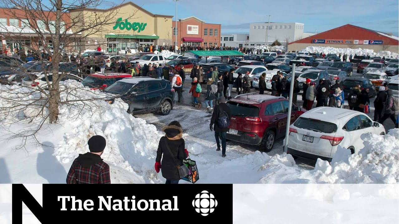 Massive lines for groceries after Newfoundland storm