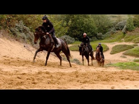 An Amazing Place To Train Racehorses!