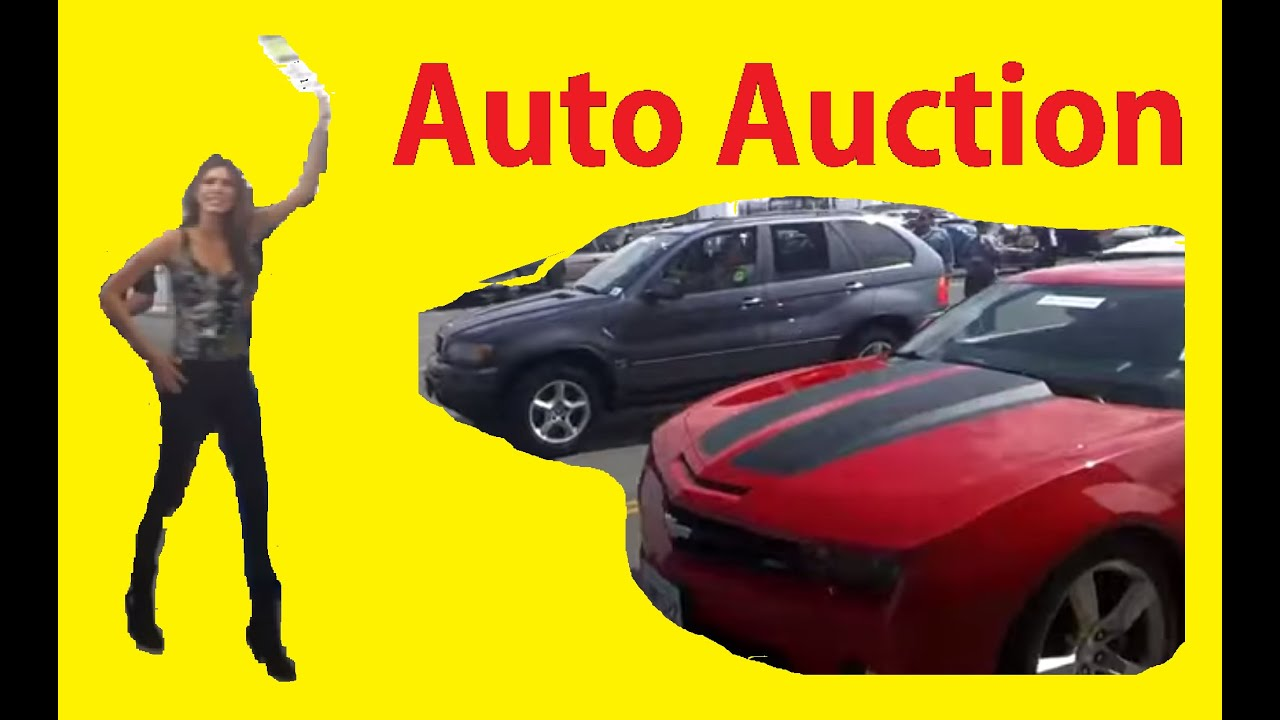 Auction Buying How To Wholesale Car Auctions Flip Cars Bidding 4