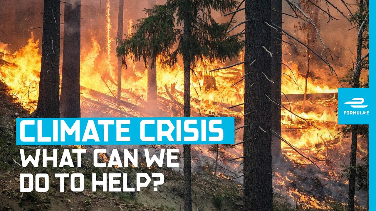 Download Here's How We Can Fight The Global Climate Crisis