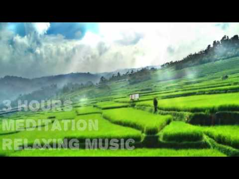 Meditation Relaxing Music Beautiful Indonesian Paddy #01