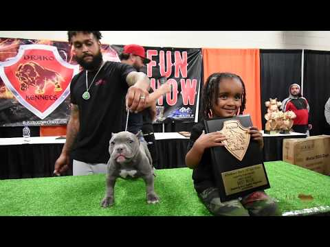 AGBtv: ABKC Allentown Bully Convention 7