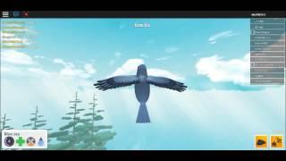 Roblox Bird Simulator (I ARE THE BLUE JAY!!!!)