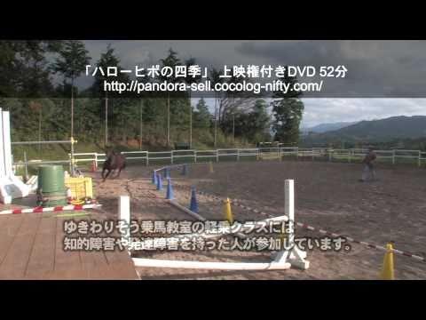 ハローヒポの四季 上映権付きDVD