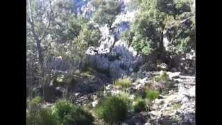 Hiking Trip Mallorca :)